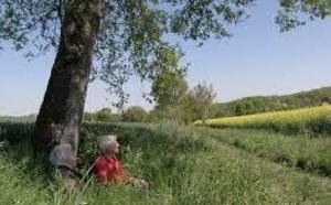 """"""" Le bonheur de vieillir """" sur ARTE : une vision positive de la vieillesse"""